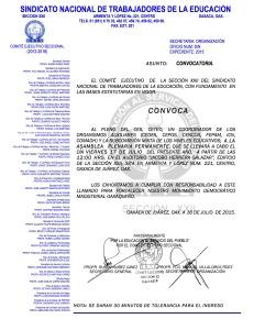 Convocatoria para la Asamblea Plenaria Permanente el 17 de julio de 2015