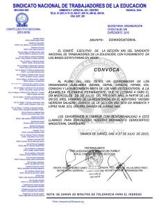Convocatoria para la Asamblea Plenaria Permanente el 29 de julio de 2015