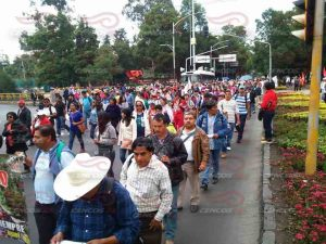 Marcha DF 10 julio 2015(1) copy