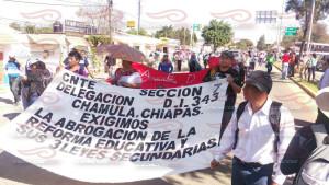 Megamarcha Nacional en Oaxaca 27 julio 2015(8)