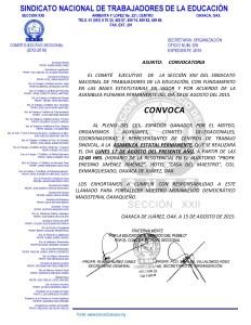 Convocatoria para la Asamblea Estatal Permanente el 17 de agosto de 2015