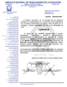 Convocatoria para la Asamblea Estatal Permanente el 17 de octubre de 2015