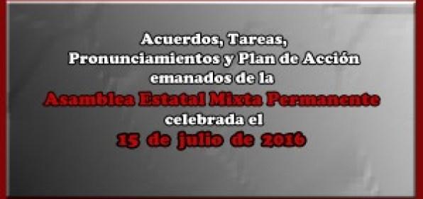 ACUERDOS Asamblea Mixta 15 julio 2016