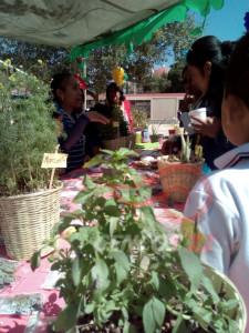 Tequio Pedagógico San Juan Teitipac 24 marzo 2017_27