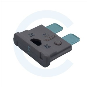 Fusible 3 Amp - CENEL