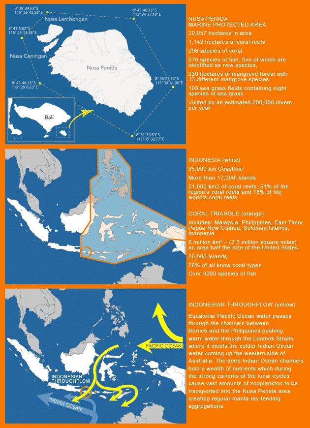 Nusa Penida Marine Protected Area