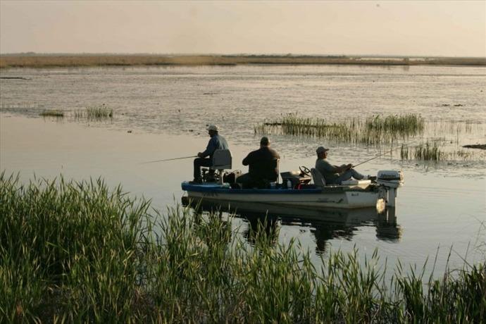fishing-stock-photo_1439502662061.jpg