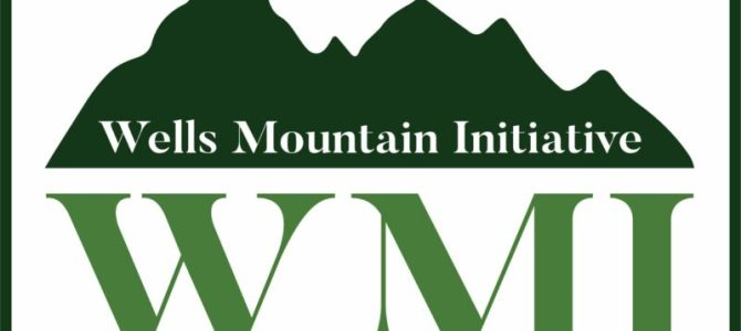Program stipendiranja Wells Mountain Initiative Scholar Program 2021