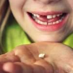 Los dientes de leche: ¿importan o no?