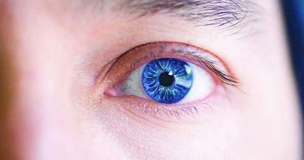 ¿Una excelente visión está relacionada con la genética
