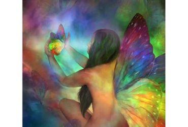 butterflyflight