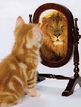 spiegelleeuw