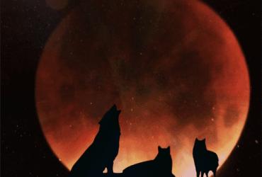 Volle+maan+maansverduistering+Petra+Stam