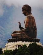 Buddha's Work
