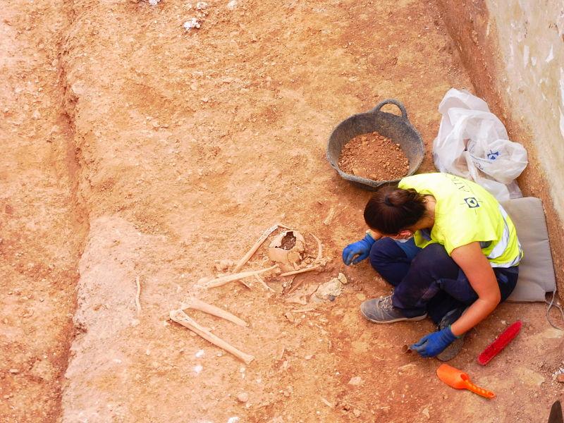 Apareixen Els Primers Cossos De Represaliats De L'any 1936 A La Zona 2 De L'excavació De Son Coletes