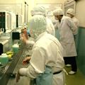 食品工場など