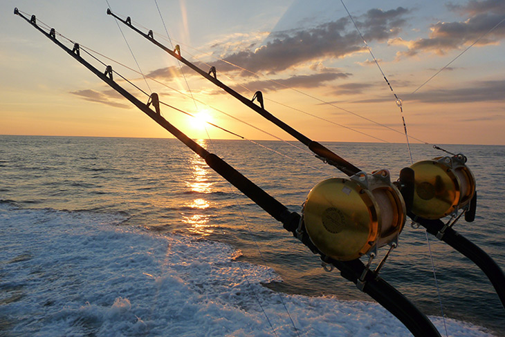 Offshore Fishing Central America Sport Fishing Central