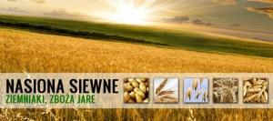 nasiona radom
