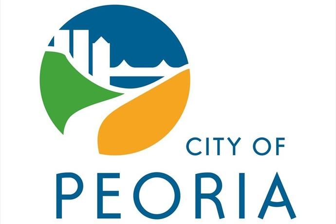 city council_1432823649870.jpg