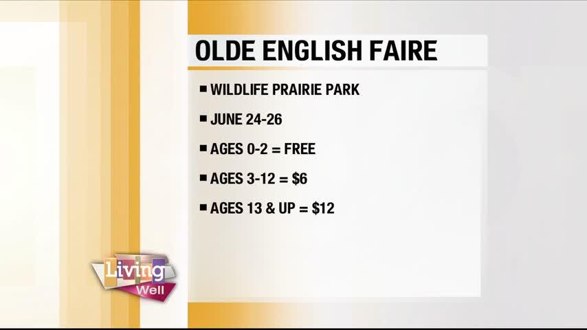 Olde English Faire 2016_64904159-159532