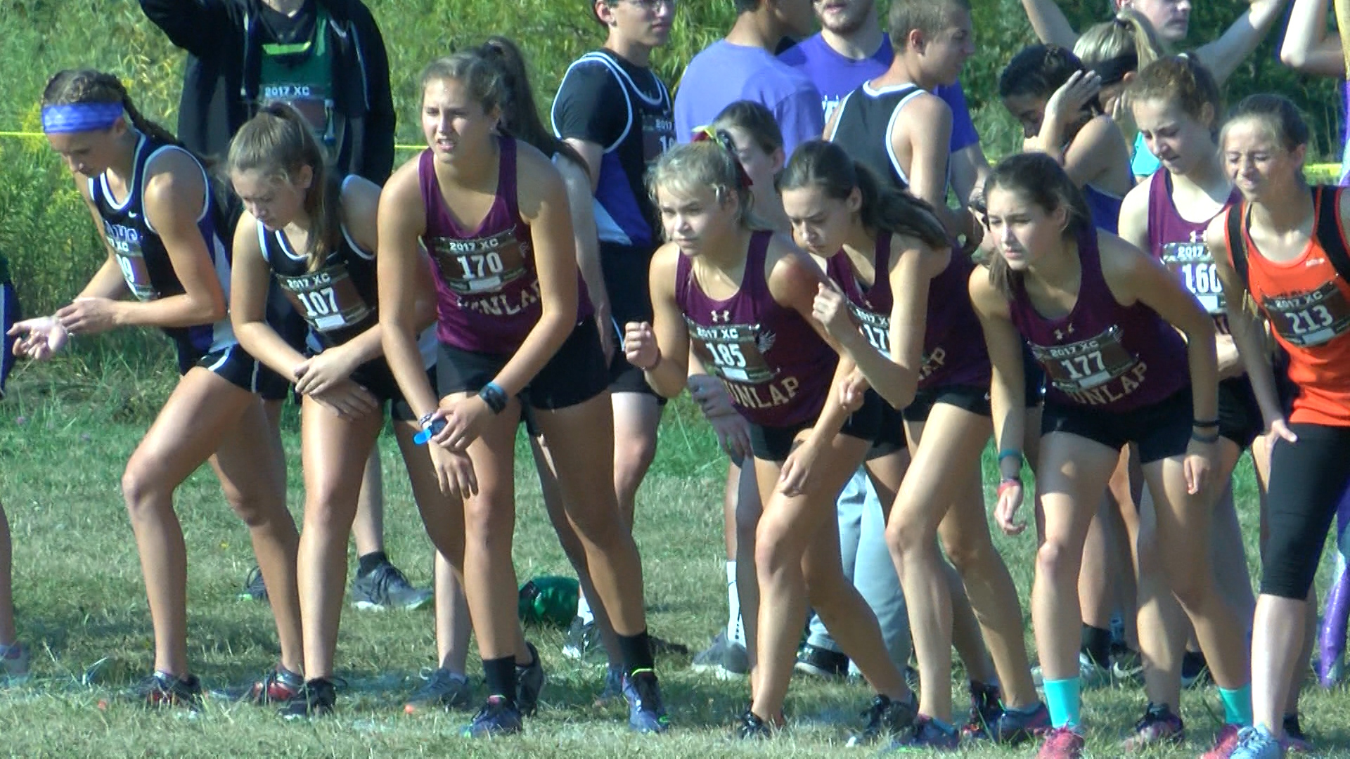 Dunlap Cross Country (girls, 2017)_1509758721757.jpg