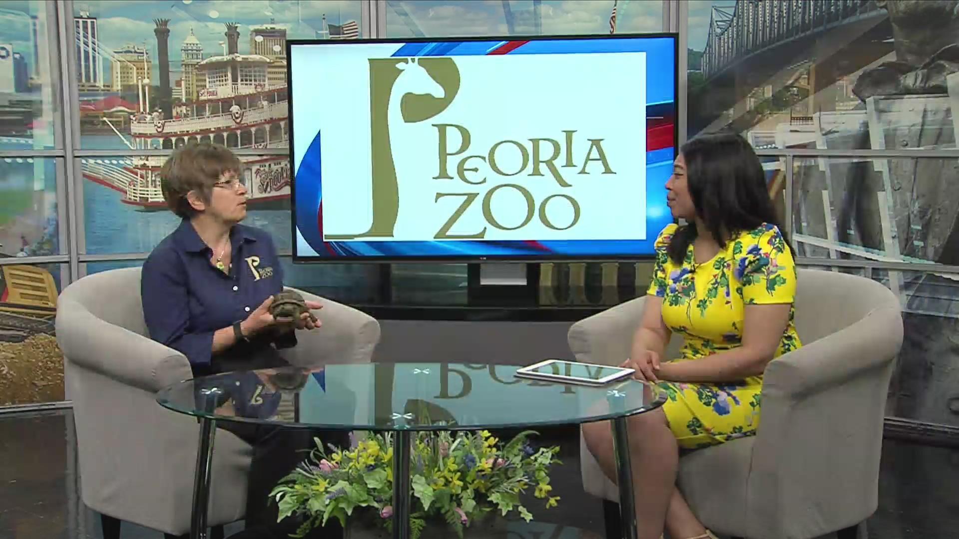 peoria zoo zoofest