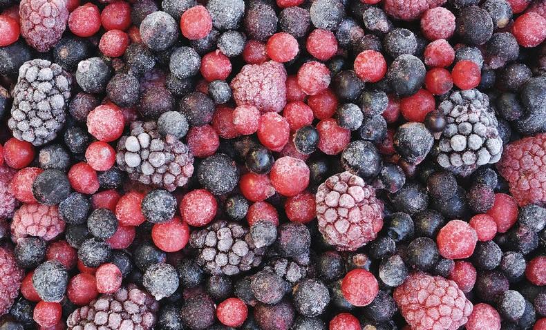 berries_1560028686794.jpg