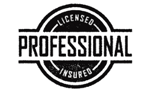 professionally licensed and insured