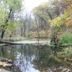 Backbone State Park (3)