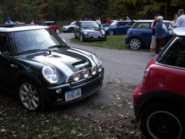 Lots of MINIs (3)