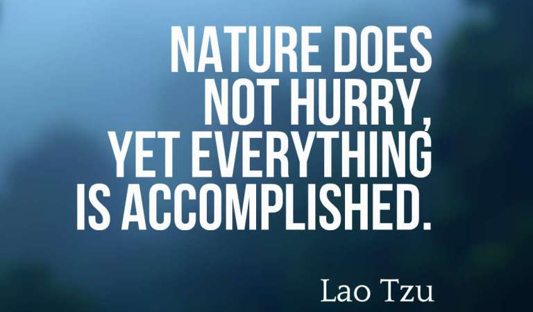 72 Beautiful Beauty of Nature Quotes And Sayings