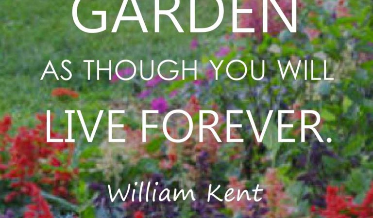 Top 50 Gardening Quotes and Sayings with Images