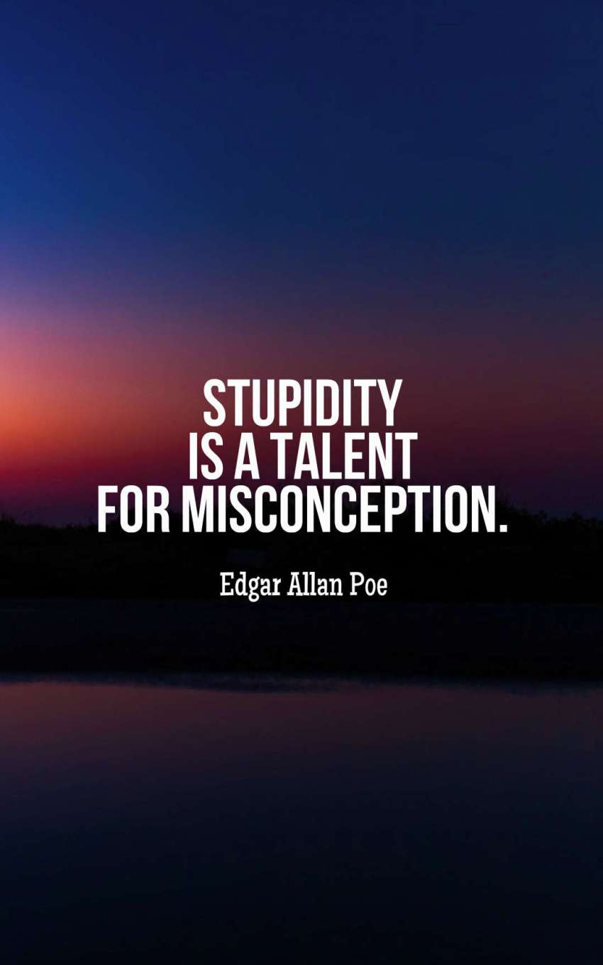 Stupidity is a talent for misconception.