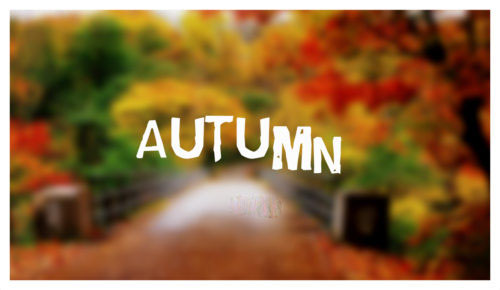 30+ Beautiful Autumn Quotes with Images – Fall Quotes