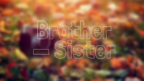 35+ Beautiful Brother Sister Quotes – Siblings Quotes