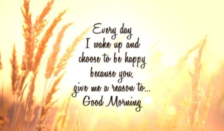90+ Beautiful Good Morning Quotes with Images That Will Enrich Your Day