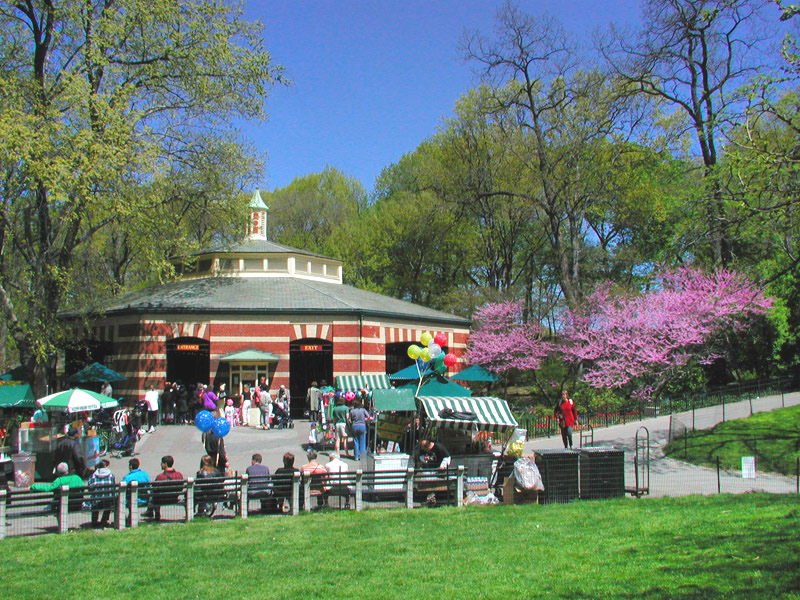 Image result for carousel ride central park
