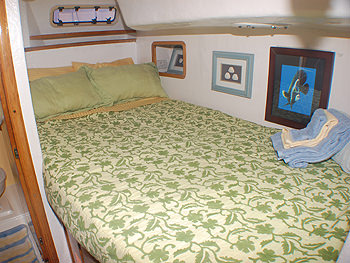 CATALYST yacht image # 7