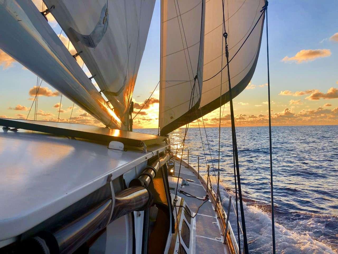 Image of KAI yacht #17