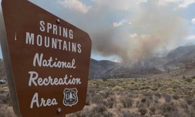 Mount Potosi wildfire