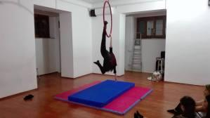 Danza Aerea (5)