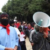 EZLN: Una historia para tratar de entender