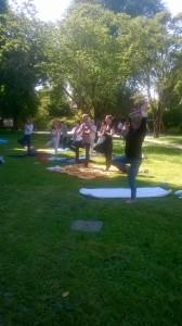 Yoga Insieme - L'Albero