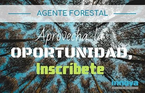 Mañana finaliza el plazo para inscribirte en las oposiciones de Agente Forestal de la CAM