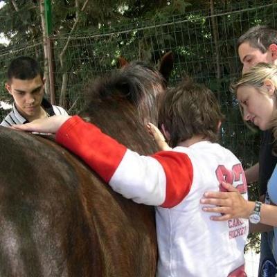 terapia_con_il_cavallo_400_01