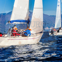 regataBardolino2015-1101
