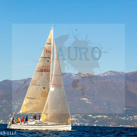 regataBardolino2015-1117
