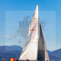 regataBardolino2015-1170