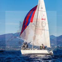 regataBardolino2015-1180