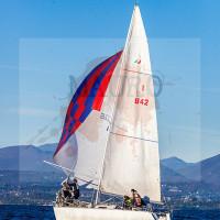 regataBardolino2015-1181